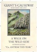 Vintage N.Ireland travel poster - Giant's Causeway
